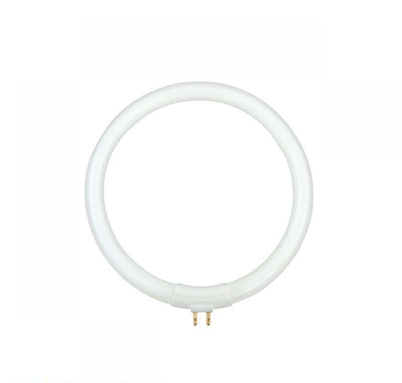 ZAR0235 T4 12W pirn luubiga lambile